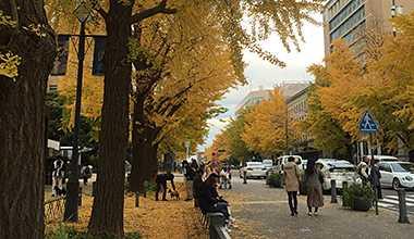 (12/18開催)渋沢栄一先生の教えを紐解く「管理者の寺子屋@ヨコハマ山下町」を開催しました!!